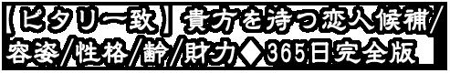 【ピタリ一致】貴方を待つ恋人候補/容姿/性格/齢/財力◆365日完全版
