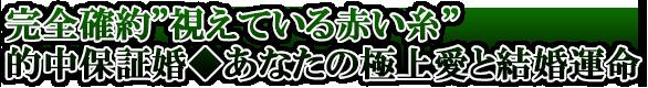 『豪華27項7万字超!』神業妙技で丸裸【二人の全運命/転機/愛結末】